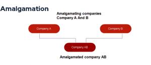 Examples of amalgamation